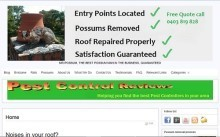 Mr Possum removal expert